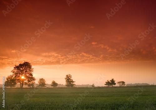Foto auf Gartenposter Landschappen Piękny i spokojny wschód słońca.