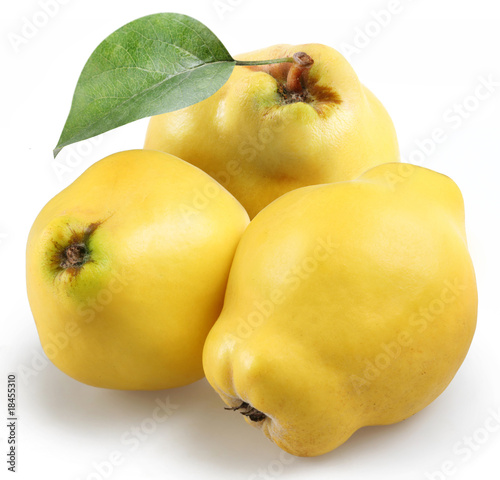 Photographie quince on a white background
