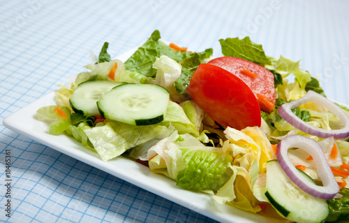 Fotografie, Obraz  Tossed Salad on a plate with a fork
