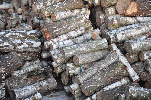 Wooden logs #18609373