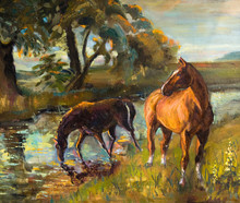 Horse To Water, Picturesque   Paintings