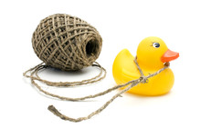 String And Yellow Duck. Isolated