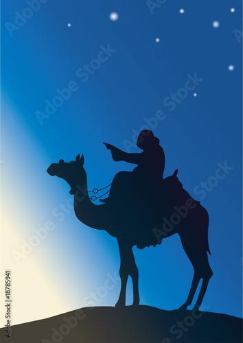 Weihnachts Abend Canvas Print