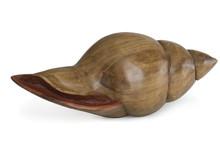 Holzschnecke