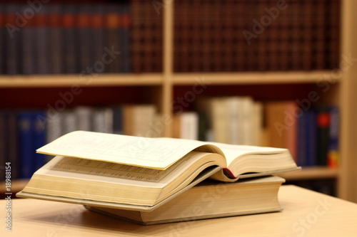 Fotomural  Books in library