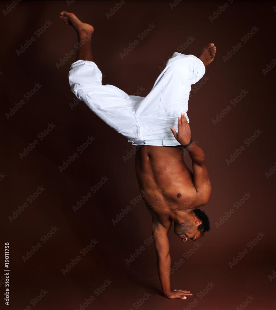 Foto-Stoff bedruckt - capoeira
