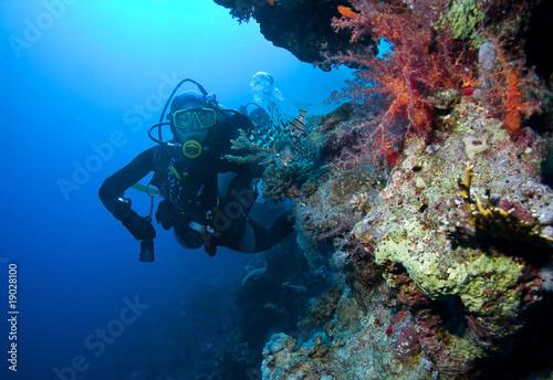 Cuadros en Lienzo Woman Scuba Diver and Lionfish