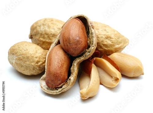 Erdnüsse Canvas Print