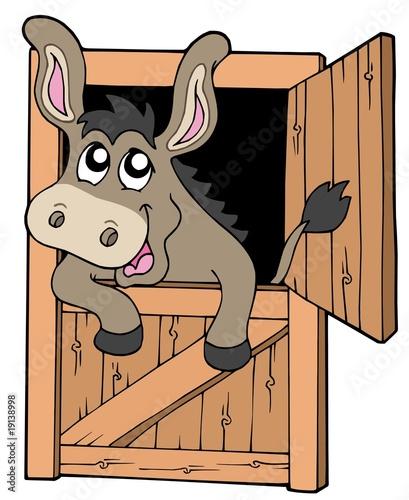 Tuinposter Doe het zelf Cute donkey in stable