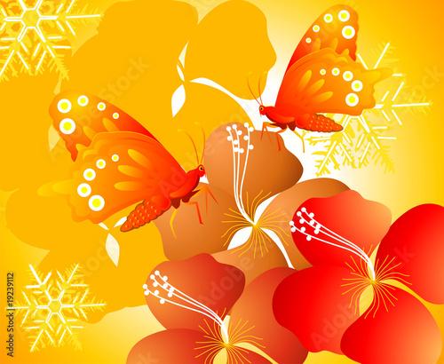 Butterfly in flowers - 19239112