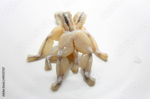 Küchenrückwand aus Glas mit Foto Frosch cuisse de grenouille