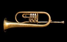 Trompete 04