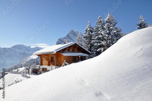 Fotografie, Obraz  Alpine scenery, Braunwald, Switzerland
