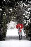 Freu im verschneiten Park