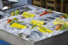 Seafood Market In Lamai (Samui...