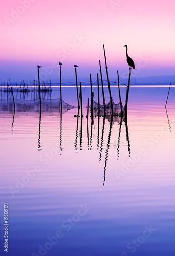 Tuinposter Lichtroze aves y paisaje