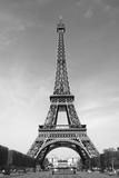 Fototapeta Fototapety z wieżą Eiffla - Paris en n/b