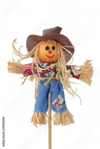 Obraz na plátně Scarecrow