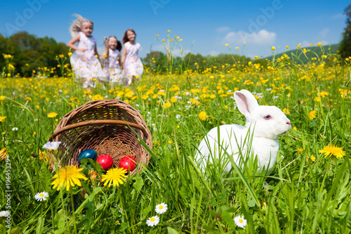 Photo  Easter bunny watching the egg hunt