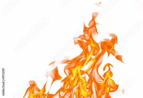 Photo sur Toile Feu, Flamme Fire flame isolated on white backgound..