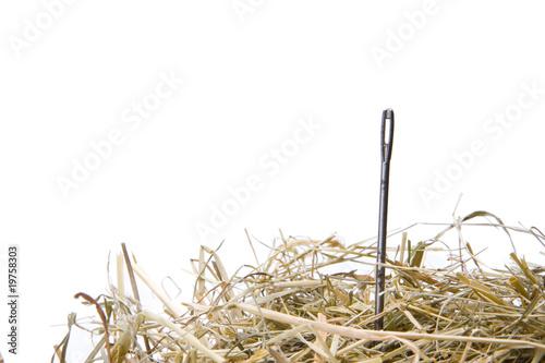 Photo Nadel im Heuhaufen