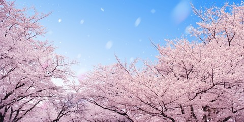 Naklejka 桜