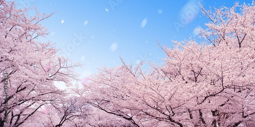 Photo Stands Light pink 桜