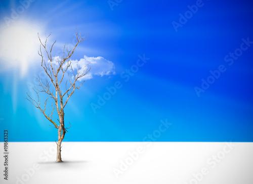 La pose en embrasure Bleu fonce arbre desséché sous le soleil désert - grosse chaleur
