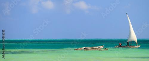 Printed kitchen splashbacks Zanzibar Tropical beach