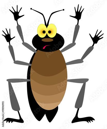 Foto auf AluDibond Ziehen cockroach