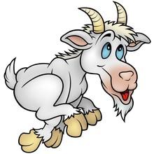Running Goat- Cartoon Illustration