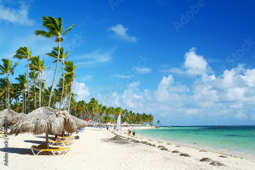 Caribbean resort beach with palm trees and sunshades Poster
