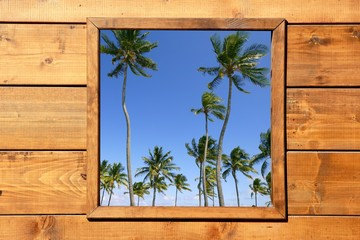 Fototapeta Tropical palm trees view from wooden window
