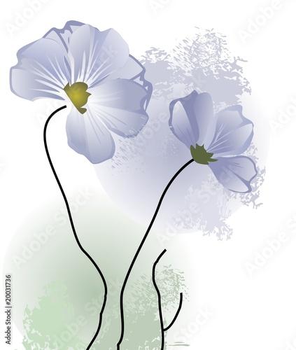 niebieskie-delikatne-wiosenne-kwiaty