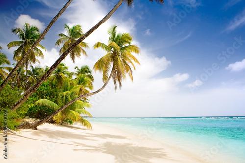 Recess Fitting Caribbean paradise caribbean beach