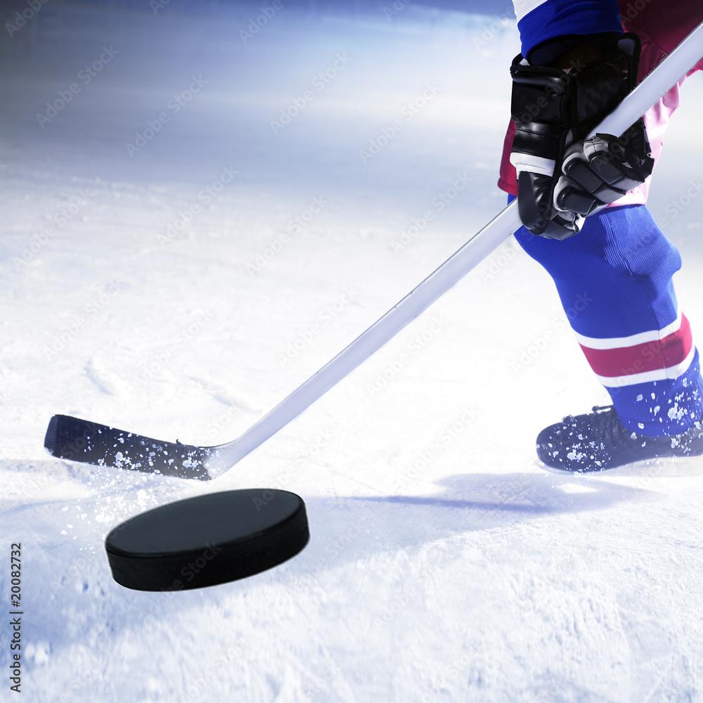 Foto-Stoff bedruckt - eishockey spieler