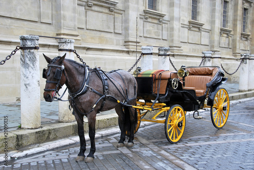 Fotografie, Obraz  Horse carriage 3