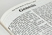 Bible Book Of Genesis