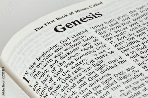 Tablou Canvas Bible Book of Genesis