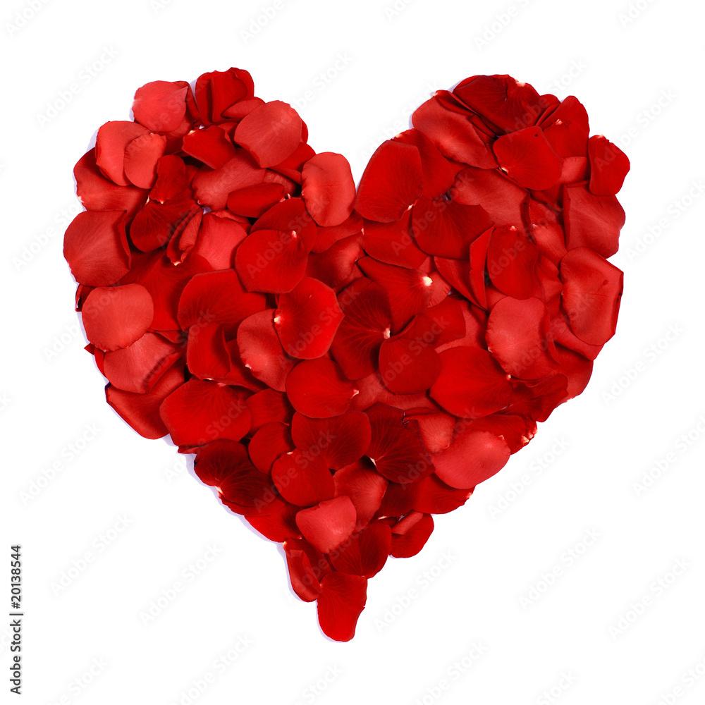 Obraz Serce z płatków róż fototapeta, plakat