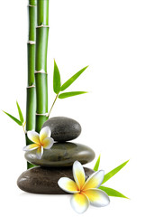 Naklejkafleurs de frangipanier, galets zen et bambou