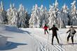 skifahren 4542