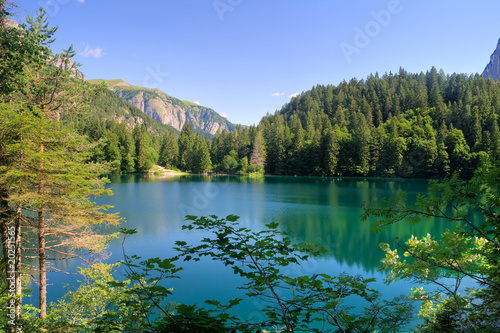 Lago Tovel, Trentino (HDR) Billede på lærred