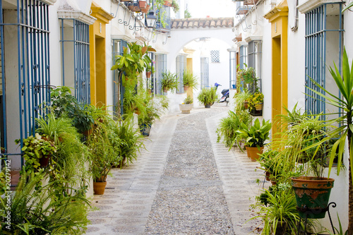 street of Cordoba, Andalusia, Spain