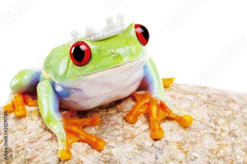 Türaufkleber Makrofotografie Frog Princess