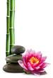 fleur de lotus, galets et bambou