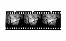 Le Cinéma De La Peur