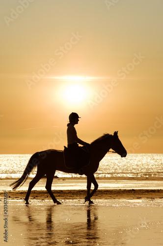Photo  A cheval sur la plage
