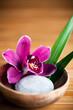 Composition zen - fleur orchidée et galet