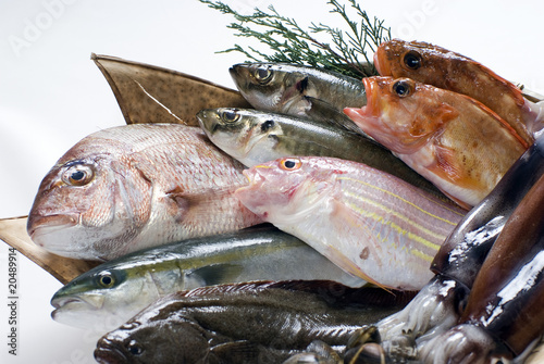 Photo sur Aluminium Poisson 魚、食材